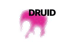 Logo der DRUID Studie
