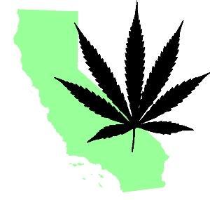 Bundesstaat Kalifornien und die Marihuana - Hanf Debatte zur Legalisierung