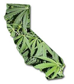 Marihuana in Kalifornien Grafik