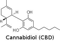 Grafik Cannabidiol Molekül - CBD