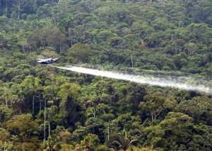 Tötung des Regenwaldes mit dem Plan Kolumbia